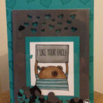 Shaker card using clear envelopes Stampin