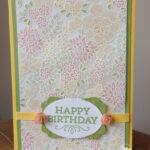 Embossed Vellum Card stampin up uk amanda fowler inspiring inkin birthday card
