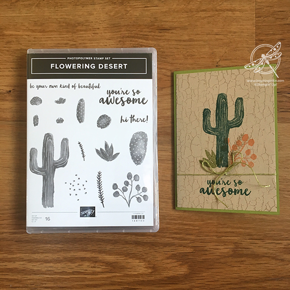 Flowering Desert Cactus Card