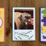 Birthday cards Stampin