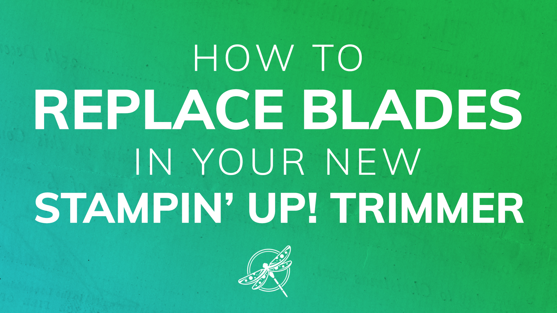 Trimmer Blades Replacement Video
