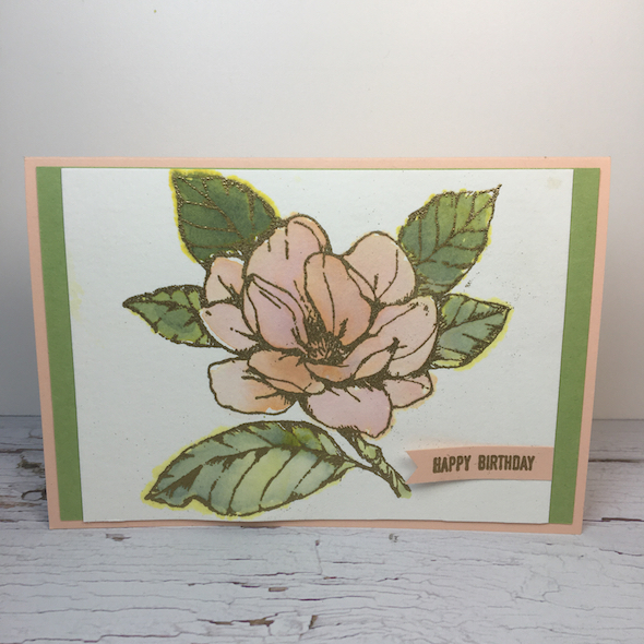 Craft and Chat : Heat Embossing and Water Colour re-inker