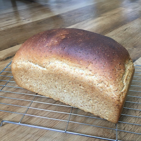 Bread Blog, and NEW catalogue launch