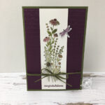 Dragonfly Congratulations Stampin