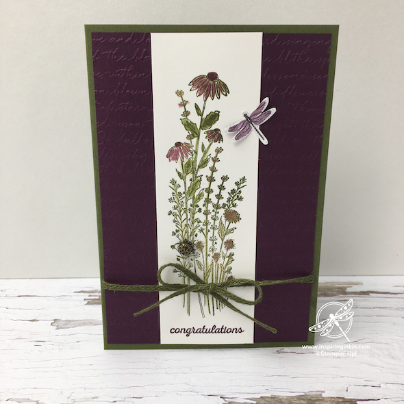 Dragonfly Congratulations Cards