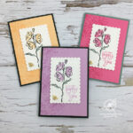 Colour and Contour Cards Stampin